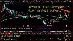 鼎龙股份(300054)股权激励计划落地,彰显长期发展信心