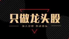 【股市资讯】新增2只优质案例股,核心逻辑深入分析!