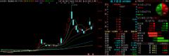 2月29日晚间金股预测:南卫股份等3股后市备受关注