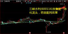 三峡水利(600116)发售配一体化龙头,增量配网改革