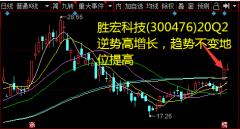 胜宏科技(300476)20Q2逆势高增长,趋势不变地位提高