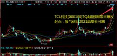 TCL科技(000100)TQ4超预期带来爆发起点,景气依旧2021高增长可期