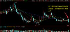 滨江集团(002244)投资端动力较强,财务稳健分红比例上升
